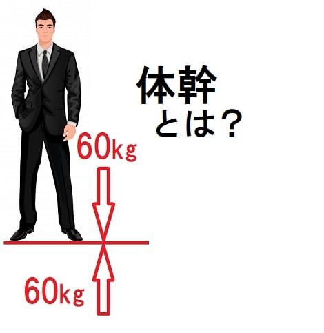 石井久美子さん、菅原順二さん「体幹について」の対談まとめ
