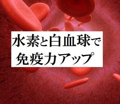 水素と白血球で免疫力アップ